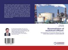 Bioremediation of recalcitrant effluent的封面