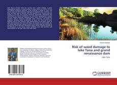 Borítókép a  Risk of weed damage to lake Tana and grand renaissance dam - hoz