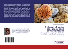 Buchcover von Phylogeny of marine sponge associated culturable bacteria