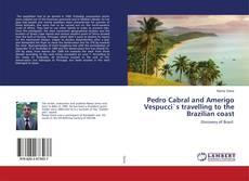 Bookcover of Pedro Cabral and Amerigo Vespucci`s travelling to the Brazilian coast