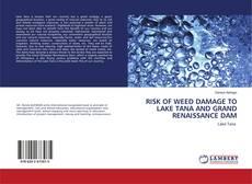 Capa do livro de RISK OF WEED DAMAGE TO LAKE TANA AND GRAND RENAISSANCE DAM