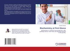 Обложка Biochemistry at First Glance