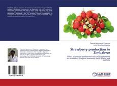 Обложка Strawberry production in Zimbabwe