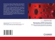 Parvovirus B19 & Anemia kitap kapağı