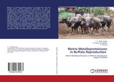 Bookcover of Matrix Metalloproteinases in Buffalo Reproduction