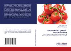 Bookcover of Tomato callus genetic transformation