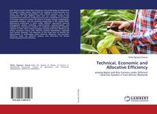 Bookcover of Technical, Economic and Allocative Efficiency