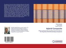 Bookcover of Hybrid Composite