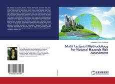 Bookcover of Multi factorial Methodology for Natural Нazards Risk Assessment