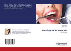Bookcover of Revealing the Hidden Cleft