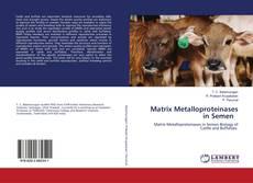 Bookcover of Matrix Metalloproteinases in Semen