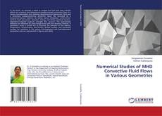 Обложка Numerical Studies of MHD Convective Fluid Flows in Various Geometries