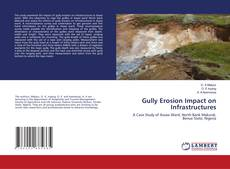 Gully Erosion Impact on Infrastructures的封面