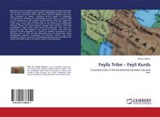 Bookcover of Feylis Tribe – Feyli Kurds