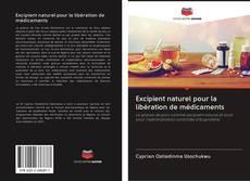 Copertina di Excipient naturel pour la libération de médicaments