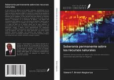 Bookcover of Soberanía permanente sobre los recursos naturales