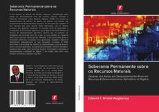 Soberania Permanente sobre os Recursos Naturais的封面