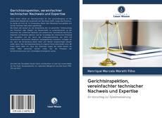 Bookcover of Gerichtsinspektion, vereinfachter technischer Nachweis und Expertise