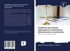 Bookcover of Судебная инспекция, упрощенное техническое обоснование и экспертиза