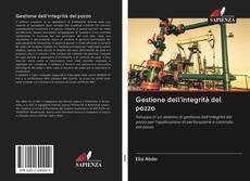 Bookcover of Gestione dell'integrità del pozzo