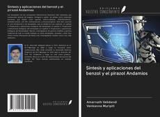 Síntesis y aplicaciones del benzol y el pirazol Andamios的封面