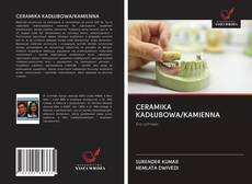 Copertina di CERAMIKA KADŁUBOWA/KAMIENNA