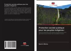 Protection sociale publique pour les peuples indigènes : kitap kapağı