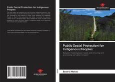 Buchcover von Public Social Protection for Indigenous Peoples: