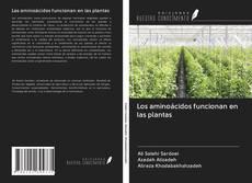Couverture de Los aminoácidos funcionan en las plantas