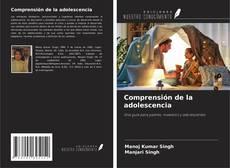 Bookcover of Comprensión de la adolescencia