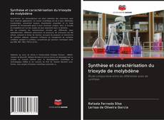 Borítókép a  Synthèse et caractérisation du trioxyde de molybdène - hoz