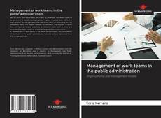 Bookcover of Management of work teams in the public administration
