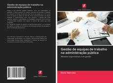 Обложка Gestão de equipas de trabalho na administração pública
