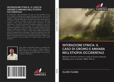Bookcover of INTERAZIONE ETNICA: IL CASO DI OROMO E AMHARA NELL'ETIOPIA OCCIDENTALE
