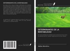 Обложка DETERMINANTES DE LA RENTABILIDAD