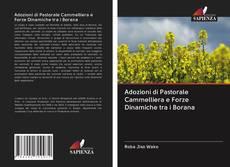 Copertina di Adozioni di Pastorale Cammelliera e Forze Dinamiche tra i Borana