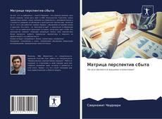 Bookcover of Матрица перспектив сбыта