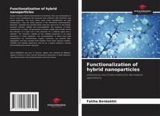 Capa do livro de Functionalization of hybrid nanoparticles