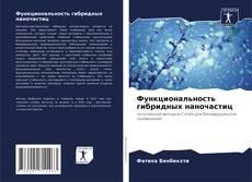 Функциональность гибридных наночастиц的封面