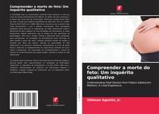 Compreender a morte do feto: Um inquérito qualitativo的封面