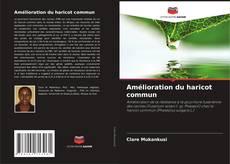 Bookcover of Amélioration du haricot commun