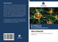 Capa do livro de ZELLZYKLUS