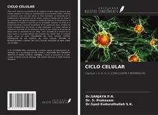Bookcover of CICLO CELULAR