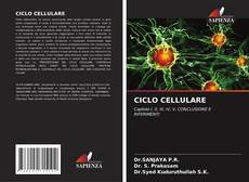 Bookcover of CICLO CELLULARE