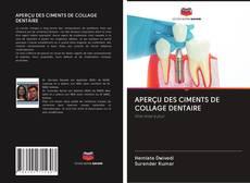 Обложка APERÇU DES CIMENTS DE COLLAGE DENTAIRE