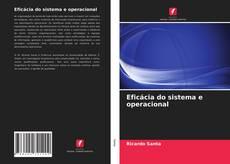 Bookcover of Eficácia do sistema e operacional