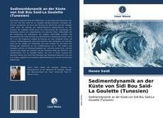 Sedimentdynamik an der Küste von Sidi Bou Saïd-La Goulette (Tunesien) kitap kapağı