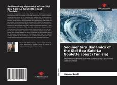Sedimentary dynamics of the Sidi Bou Saïd-La Goulette coast (Tunisia) kitap kapağı