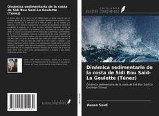 Copertina di Dinámica sedimentaria de la costa de Sidi Bou Saïd-La Goulette (Túnez)