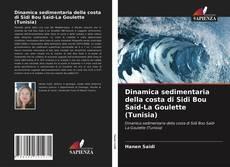 Dinamica sedimentaria della costa di Sidi Bou Saïd-La Goulette (Tunisia) kitap kapağı